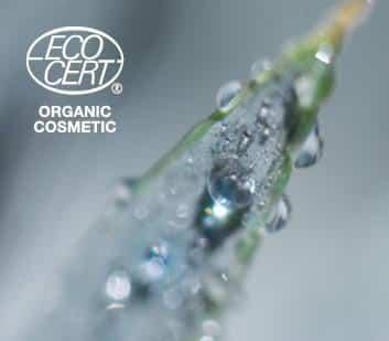Orgaaniline kosmeetika Esse